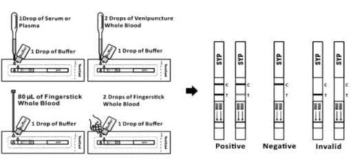 Syphilis rapid test